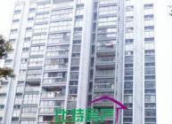 城中同悦容园 3室2厅114平米 精装修 押一付三